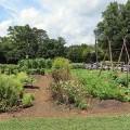 Old Salem Museum and Gardens (Winston-Salem)