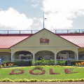 Dole Pineapple Plantation (Wahiawa)
